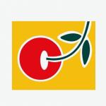 logocandit